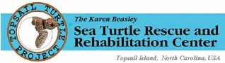 Topsail Turtle Project