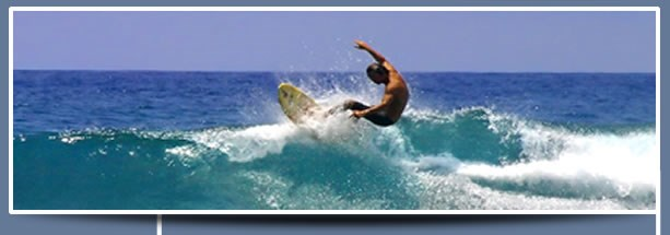 Fuss Surfer