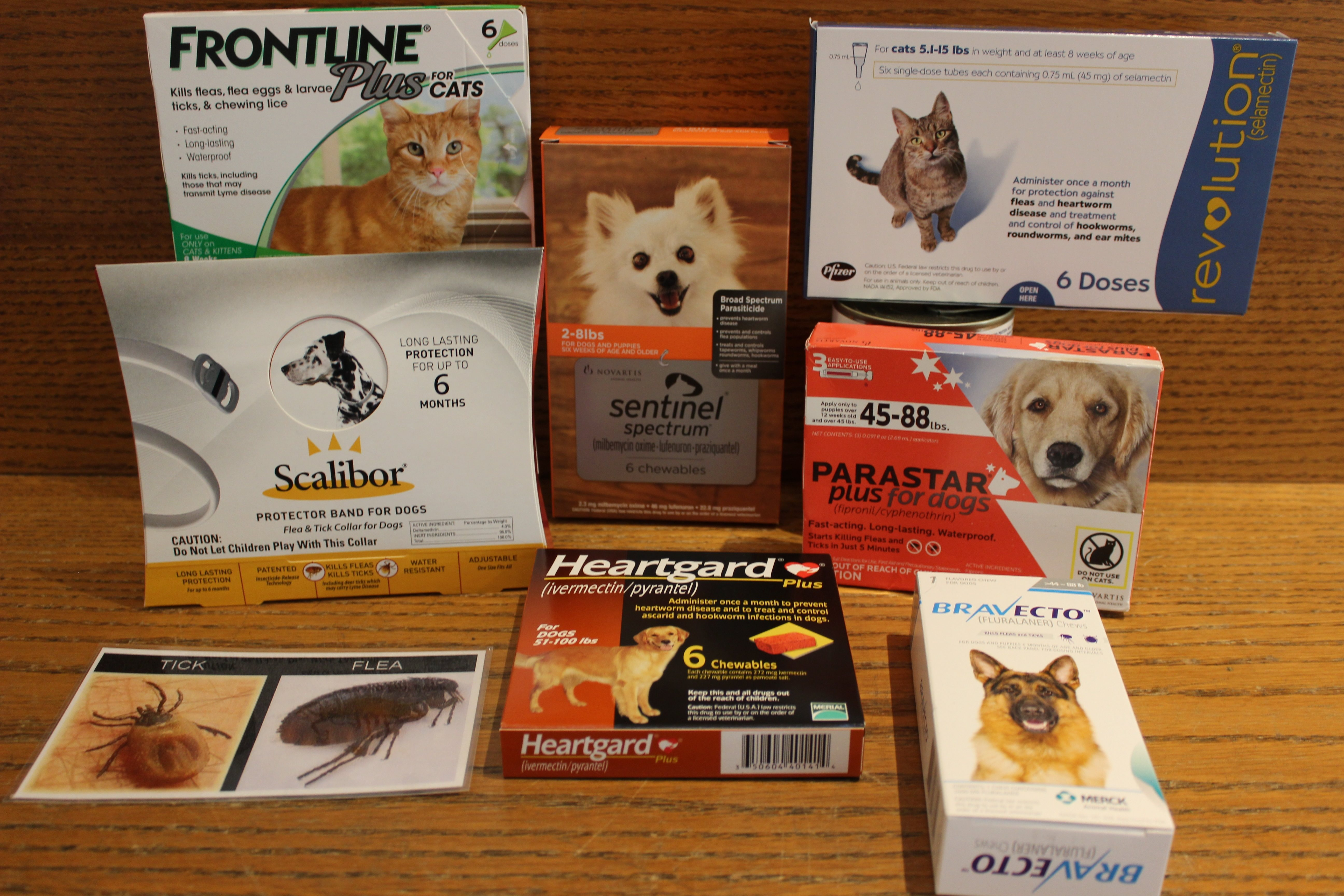 Why should I buy my pet's preventative products from my veterinarian?