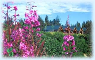 Alaskan Suites - 2