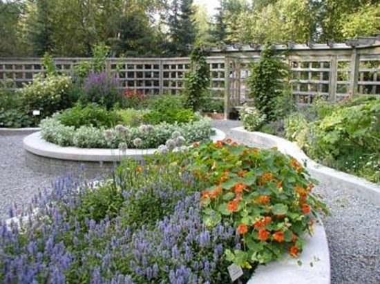 Alaska Botanical Garden - 2