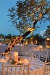 Amanwana Resort - 3