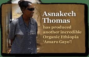 Technivorm and Ethiopia coffee