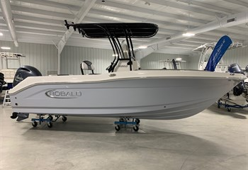 2021 Robalo R202 Explorer Alloy Gray  Boat